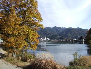 羊山公園紅葉1.jpg