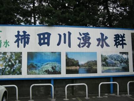 柿田川湧水群.jpg