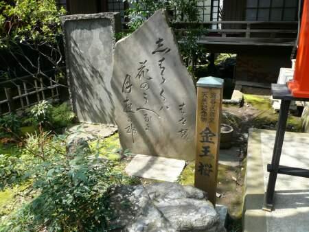 金王桜 石碑.jpg