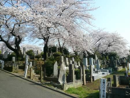 染井霊園201001.jpg