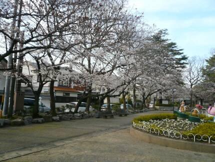 大垣城 桜1.jpg