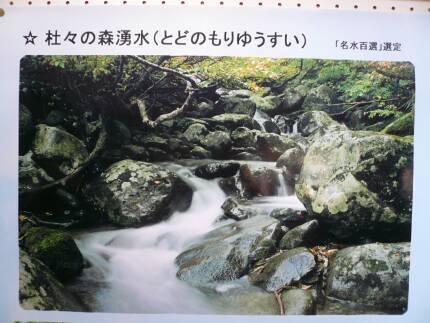 杜々の森湧水.jpg