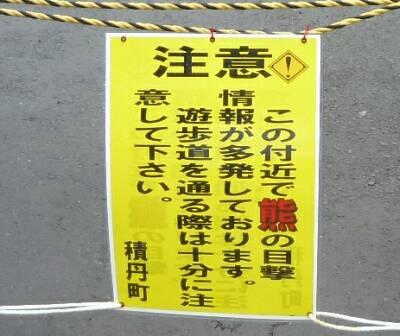 島武意海岸5.jpg