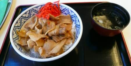 豚生姜焼丼.jpg