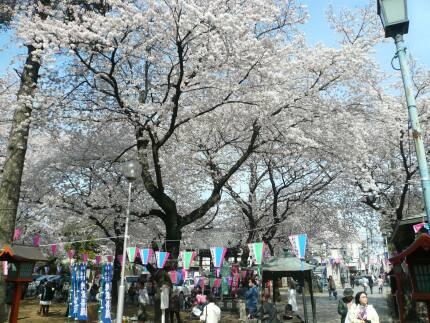 蓮馨寺200901.jpg