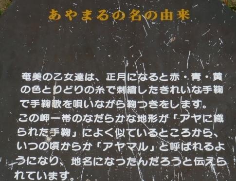 あやまる岬2.jpg