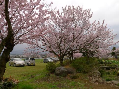 ふくざわ公園4.jpg