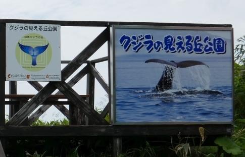 クジラの見える丘公園.jpg