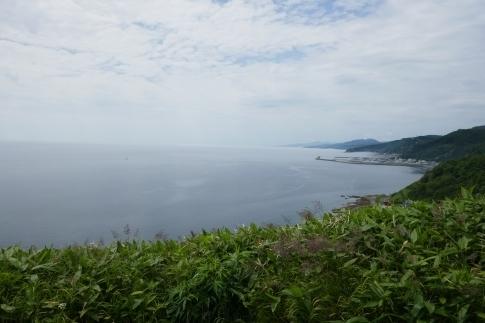 クジラの見える丘公園4.jpg