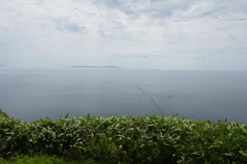 クジラの見える丘公園5.jpg