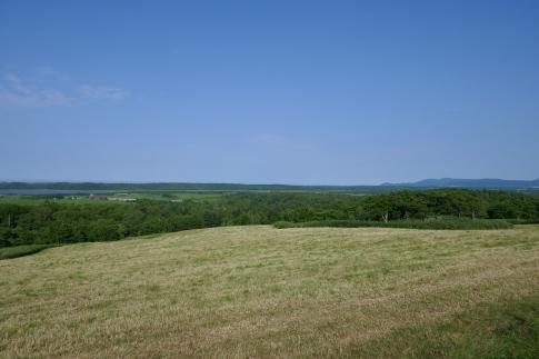 クローバーの丘3.jpg