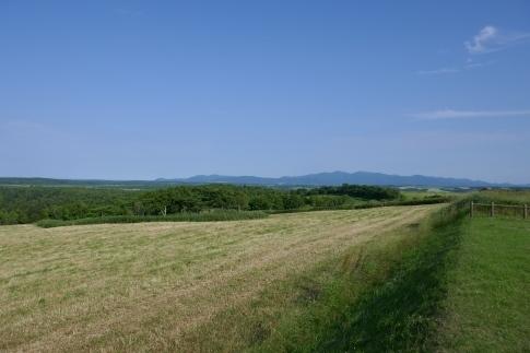 クローバーの丘6.jpg