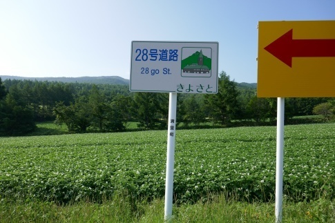 一本の道2.jpg
