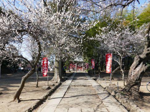 三芳野神社3.jpg