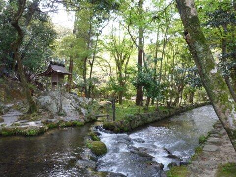 上賀茂神社5.jpg