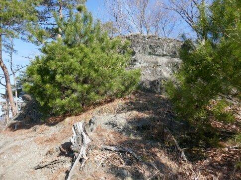 上遠野城跡 亀の子石.jpg