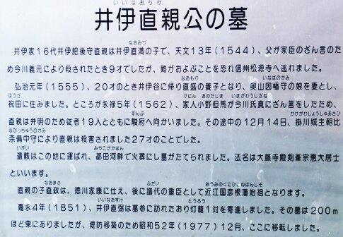 井伊直親の墓3.jpg