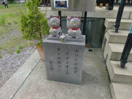 今戸神社 まねき猫2.jpg