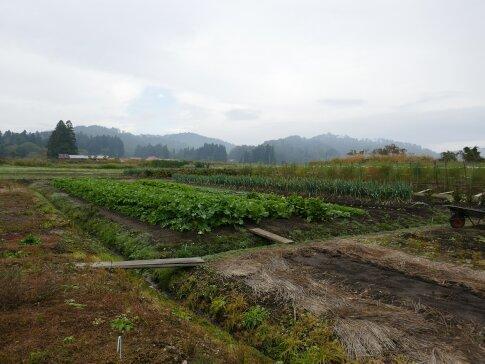 会津新宮城4.jpg