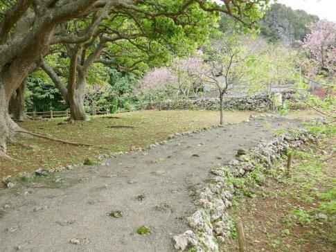 八重瀬城3.jpg