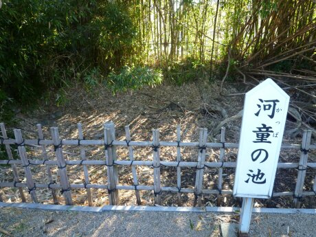 円応寺 中津 河童の池.jpg