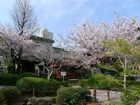 円鏡寺5.jpg