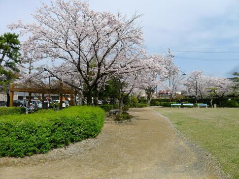 円鏡寺公園2.jpg