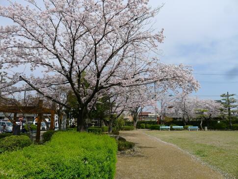 円鏡寺公園3.jpg