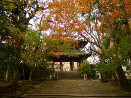 功山寺の紅葉1.jpg
