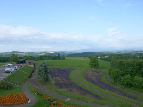北西の丘2.jpg
