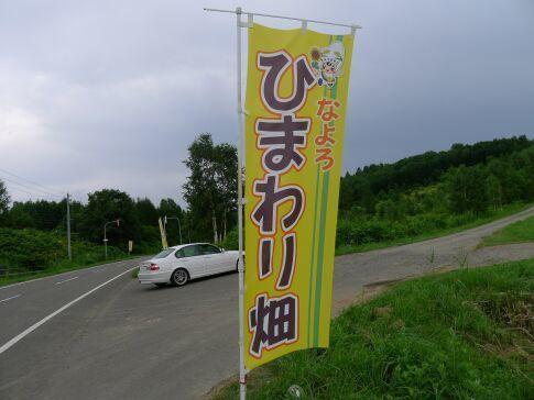 名寄ひまわり畑.jpg
