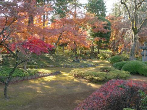 喜多院庭園の紅葉2.jpg