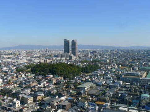 堺市役所 展望台3.jpg