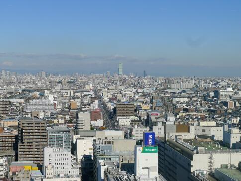 堺市役所 展望台5.jpg