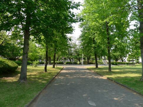 多賀谷城趾公園2.jpg
