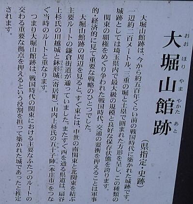 大堀山館跡.jpg