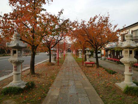 大聖寺の紅葉 越谷3.jpg