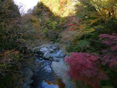 大血川渓谷の紅葉2.jpg