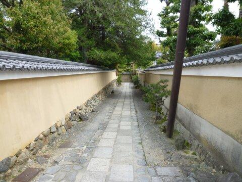 妙心寺 仏殿2.jpg