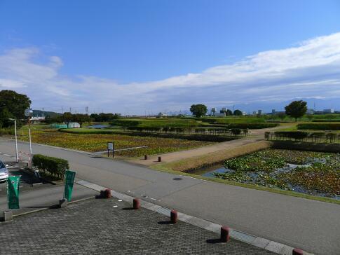 安田城跡2.jpg