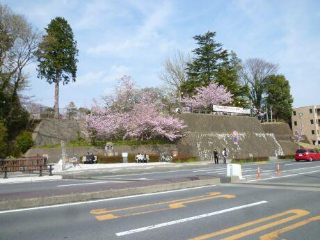 小山祇園城1.jpg