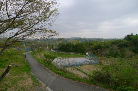 小浜城5.jpg