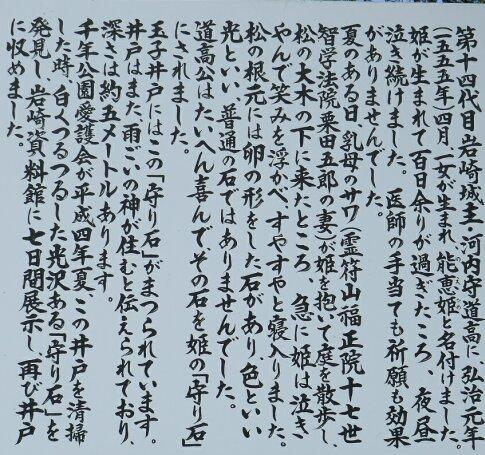 岩崎城址 玉子井戸2.jpg