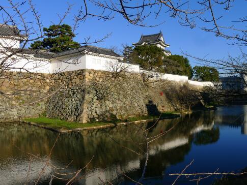 岸和田城3.jpg