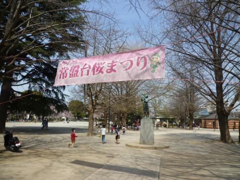平和公園 桜2.jpg