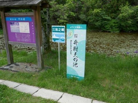 弁財天の池.jpg