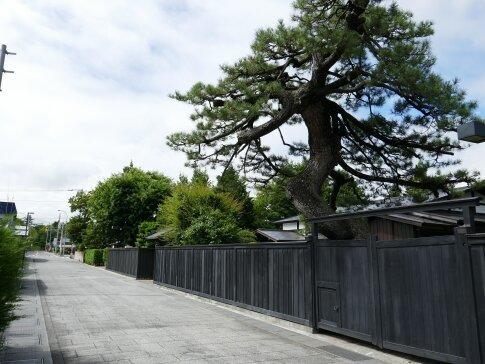 弘前市仲町重要伝統的建造物群保存地区4.jpg