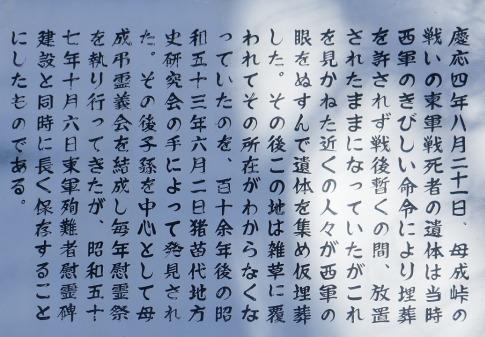 戊辰戦争東軍慰霊碑4.jpg