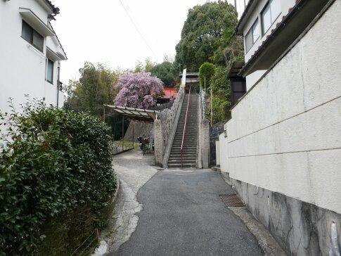 才蔵寺3.jpg
