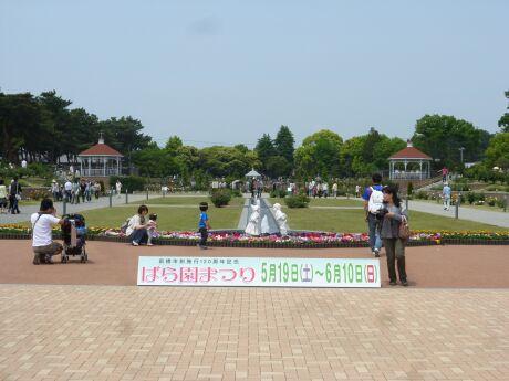 敷島公園 ばら園.jpg